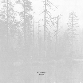 HATE FOREST - The Curse LP